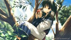NIS America издаст ремейк оригинальной Utawarerumono на западном рынке